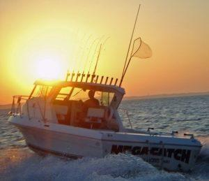captain park CHARTER FISHING